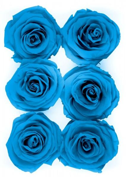 Wonderful Six Blue