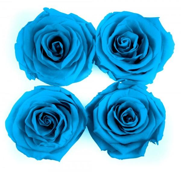 Simply Four Blue