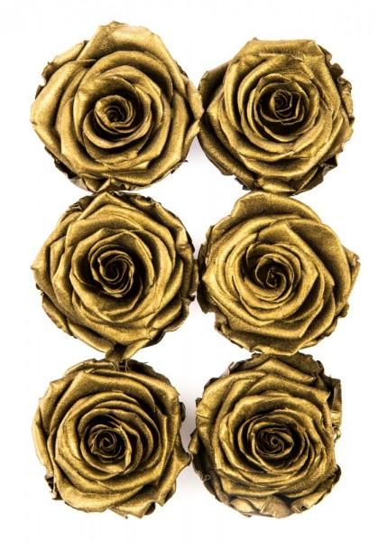 Wonderful Six Gold